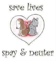 Picture that says Save Lives Spay and Neuter.